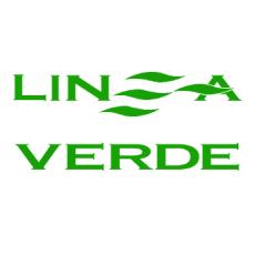 DS Línea Verde