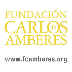 基金会 - 卡洛斯 - 的Amberes