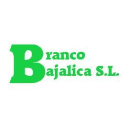白Bajalica车标
