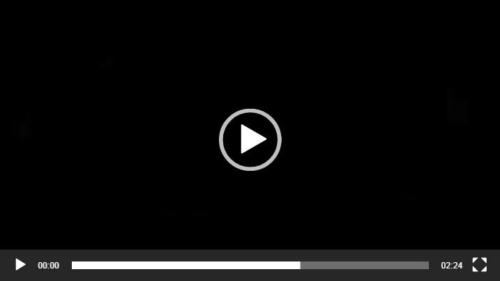 视频戈梅利