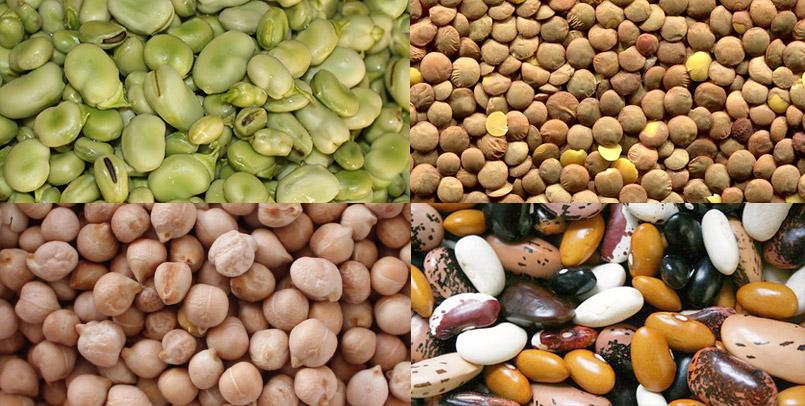 legumbres-sello-de-calidad